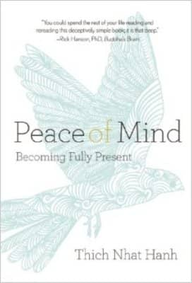 peace of mind book cover
