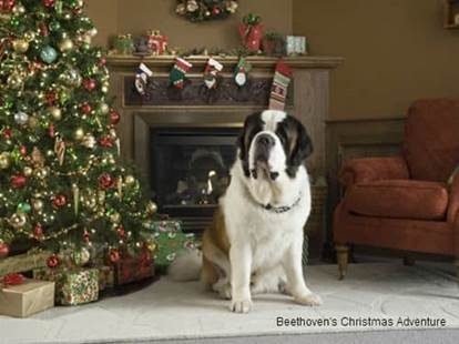 Beethoven's Christmas Adventure 2011