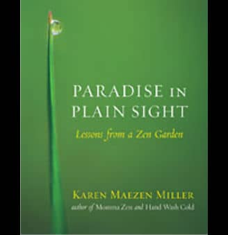 paradise in plain sight book cover