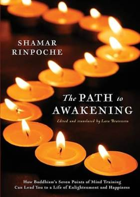 The Path to Awakening Book Cover