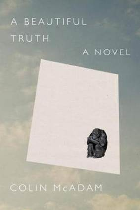 A Beautiful Truth Book Cover