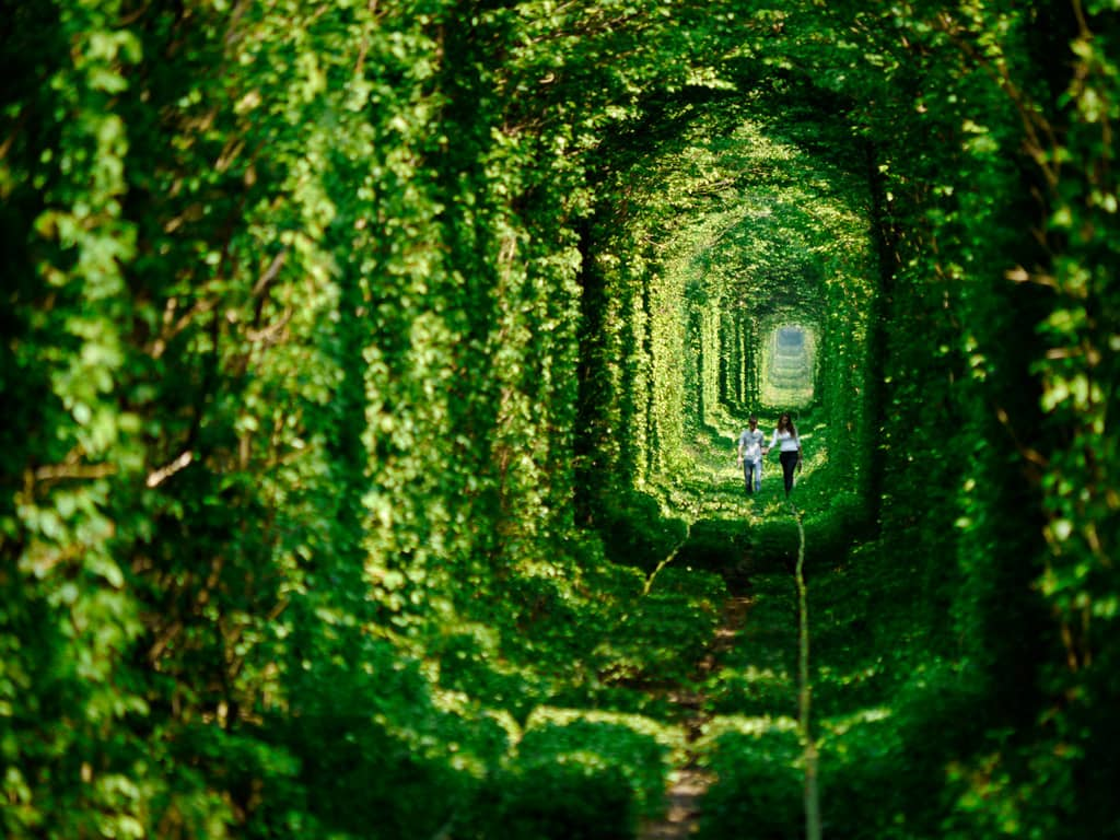 tunnel of love, ukraine, 20 Most Beautiful Places