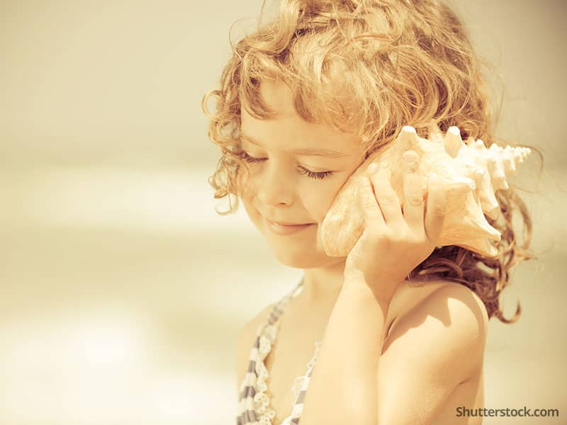 child-girl-beach-shell