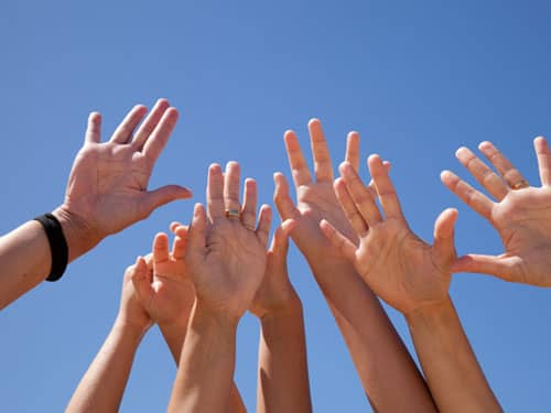 A group of raised hands