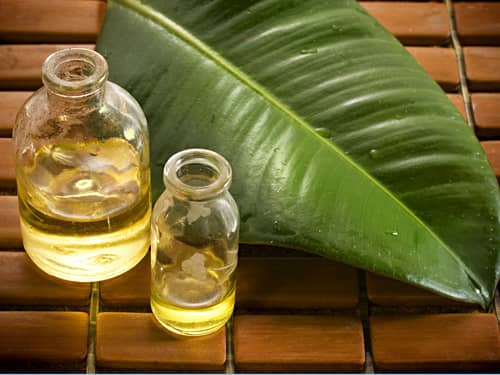 Holistic oils and leaf