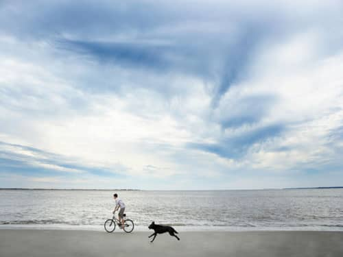 Man on bicycle and dog running on beach