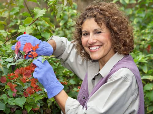 Smiling Red Curly-Haired Woman pruning flowers in green garden with gloves