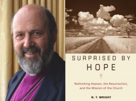 N.T. Wright, Surprised by Hope, Bishop N.T. Wright