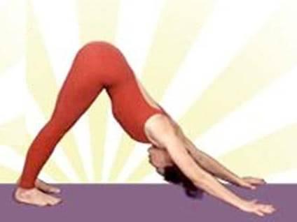 Yoga Basics, Yoga Pose, Hatha Yoga, Yogi