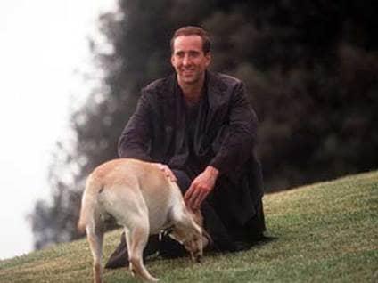 City of Angels Nicolas Cage