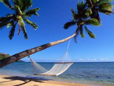 Hammock between palm trees on a beach
